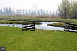 Scherpere doelstellingen voor Fries natuurbeleid noodzakelijk